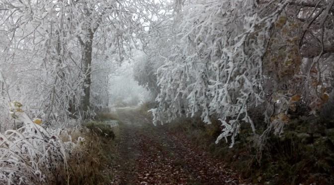 winter-wetter auf dem weg