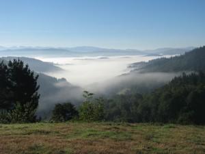 nebel liegt im tal